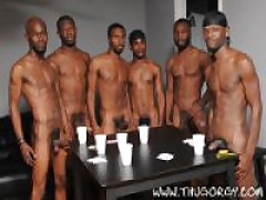 Phoenix, Solo, Blaque Rod, Intrigue, Dragon And Pleasure Boi
