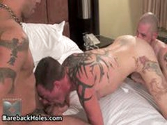Horny Gay Bareback Fucking And Cock Sucking Porn 31 By BarebackHoles