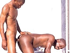 Filthy Black Gays Hardcore Outdoor Fuck